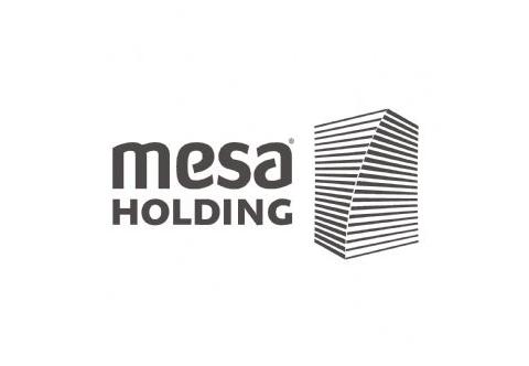 Mesa Holding